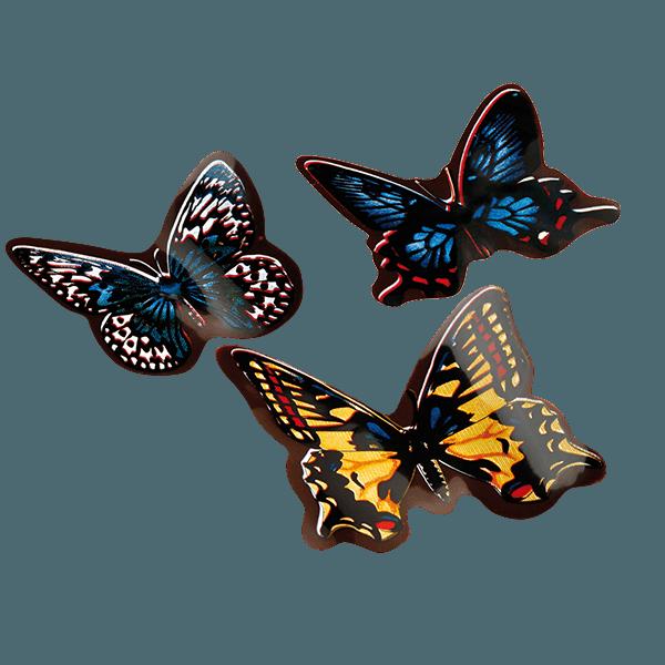 papillons en chocolat chocolatree